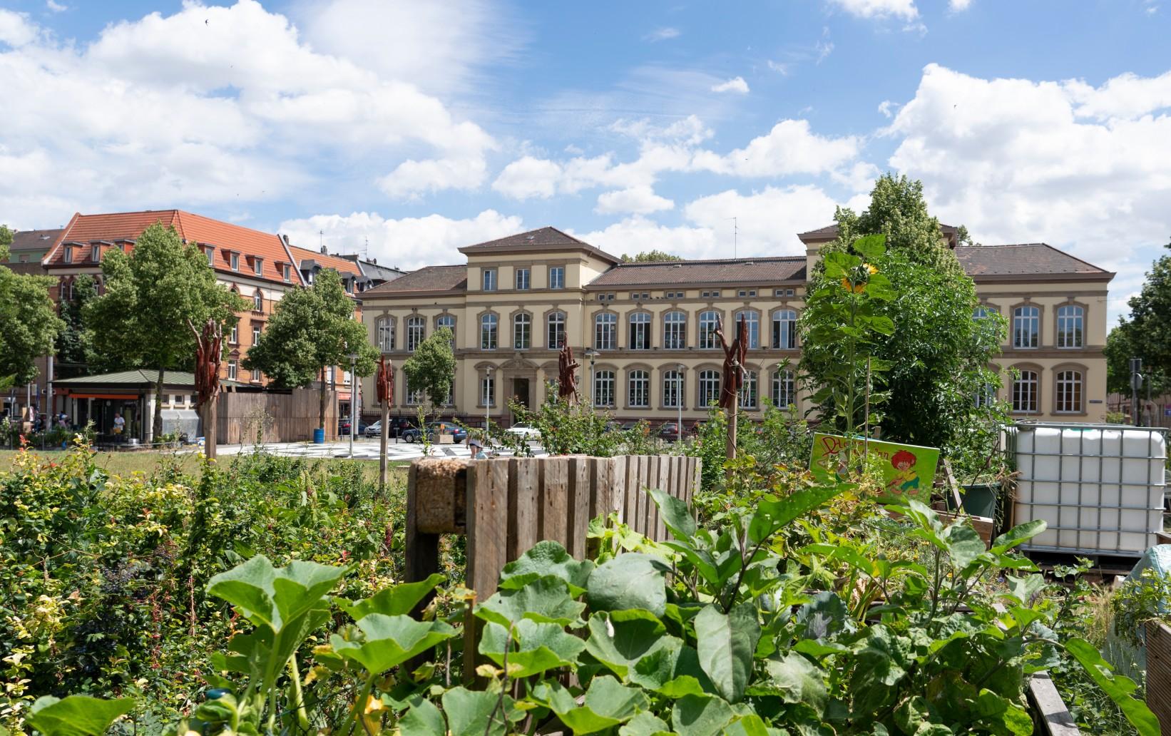 LOS Neckarstadt-West